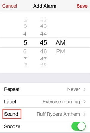 Ensure Setting Up the Alarm Sound to Fix iPhone Alarm Not Going Off