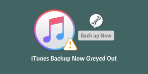 iTunes Backup Now Greyed Out