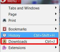 How to Check Computer History on Opera